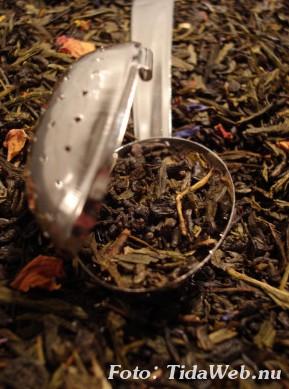 Drick grönt te och lev längre
