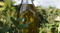 Vi har testat olivolja från Citronodlingen på Sicilien